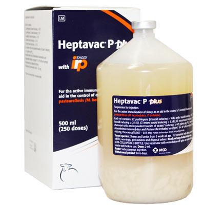 Heptavac P Plus|Animal Farmacy