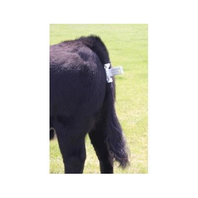Tail Clamp Animal Farmacy