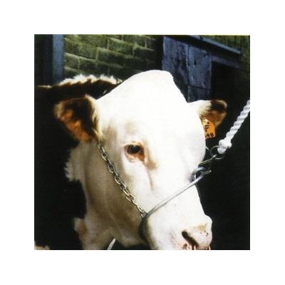 Metal Training Halter Animal Farmacy
