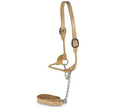 Natural Leather Rolled Halter|Animal Farmacy