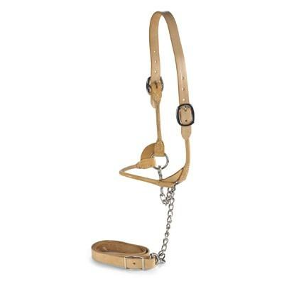 Natural Leather Rolled Halter Animal Farmacy