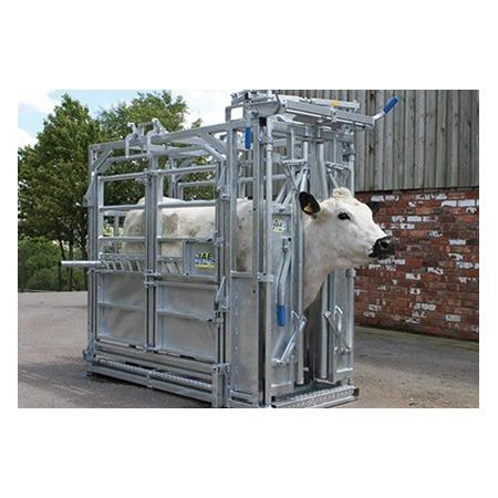 Saracen Dual|Animal Farmacy