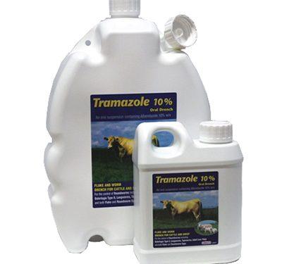 Tramazole|Animal Farmacy