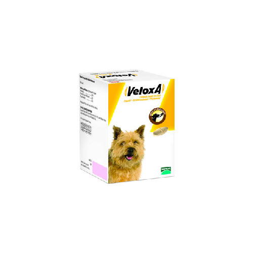 Veloxa Dog Wormer Animal Farmacy