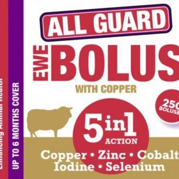 All Guard Ewe Bolus 5in1|Animal Farmacy