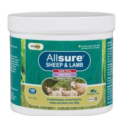 Allsure Sheep&Lamb Bolus|Animal Farmacy