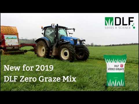 DLF Grass Seed Zero Graze|Animal Farmacy